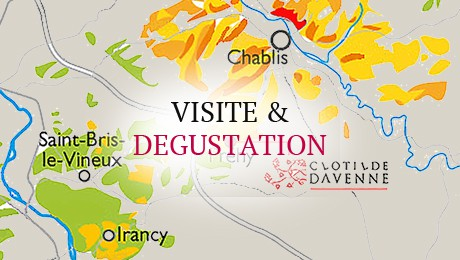 Visite & dégustation